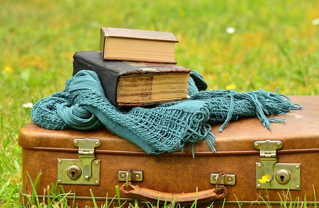 luggage-1482693_640